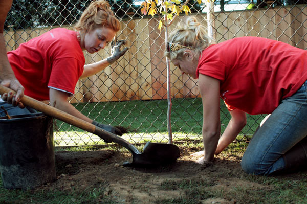 With barely half an hour to go before the reveal, Alyssa Chuback and Kasia Kilner ferverently plant one of two new trees for the backyard. (Mitch Thompson photo)